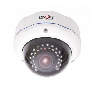 2MP IP IR Vandal Dome Kamera